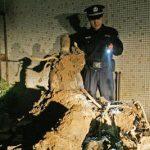 Second World War American fighter wreckage found in Wuhan
