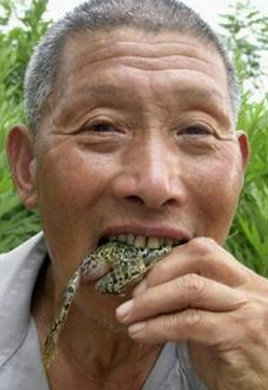 eating a frog