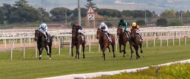 , The growing popularity of horse racing in China