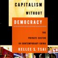 Capitalism Without Democracy