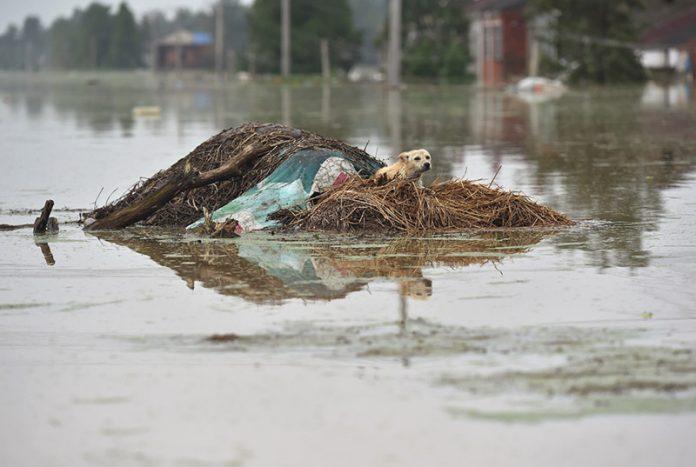 Floods hit China