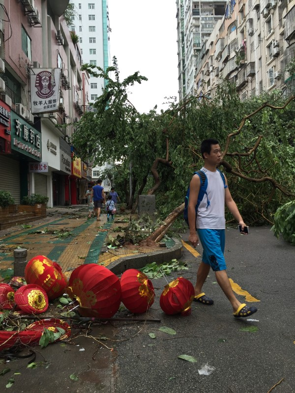 People walk past uprooted trees after Typhoon Meranti made a landfall on southeastern China, in Xiamen, Fujian province, China, September 15, 2016. REUTERS/Stringer