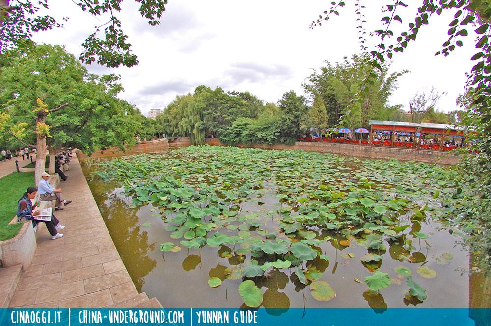 trip to green lake park