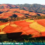 Red Earth of Dongchuan District