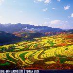 Trip to Yuxi