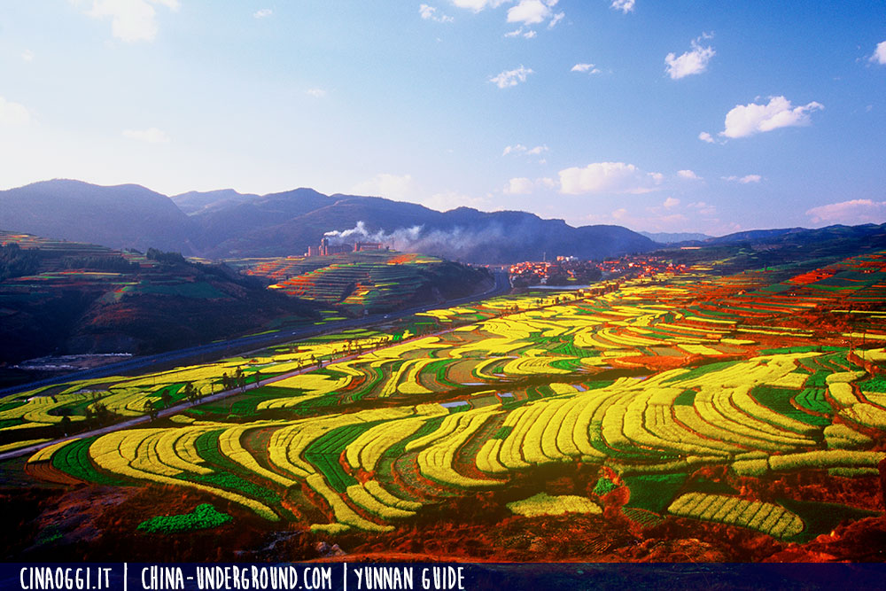 Terrace fields of Yuxi