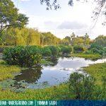 Trip to Daguan Park