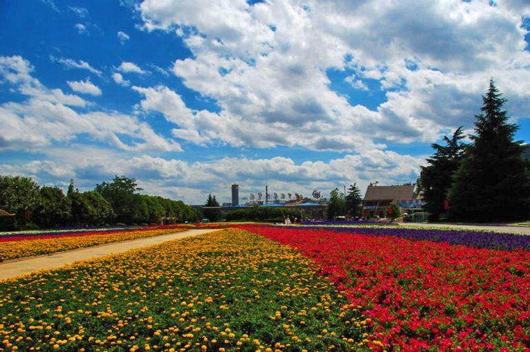 trip to the expo garden
