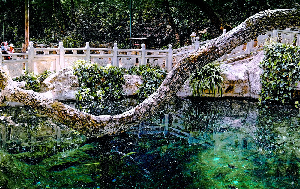 Butterfly Spring, Dali, Yunnan, China