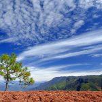 The Red Sandstone Landform of Liming