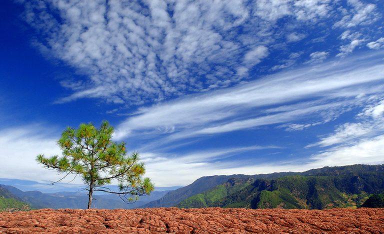 Liming Lijiang - Liming Red Sandstone