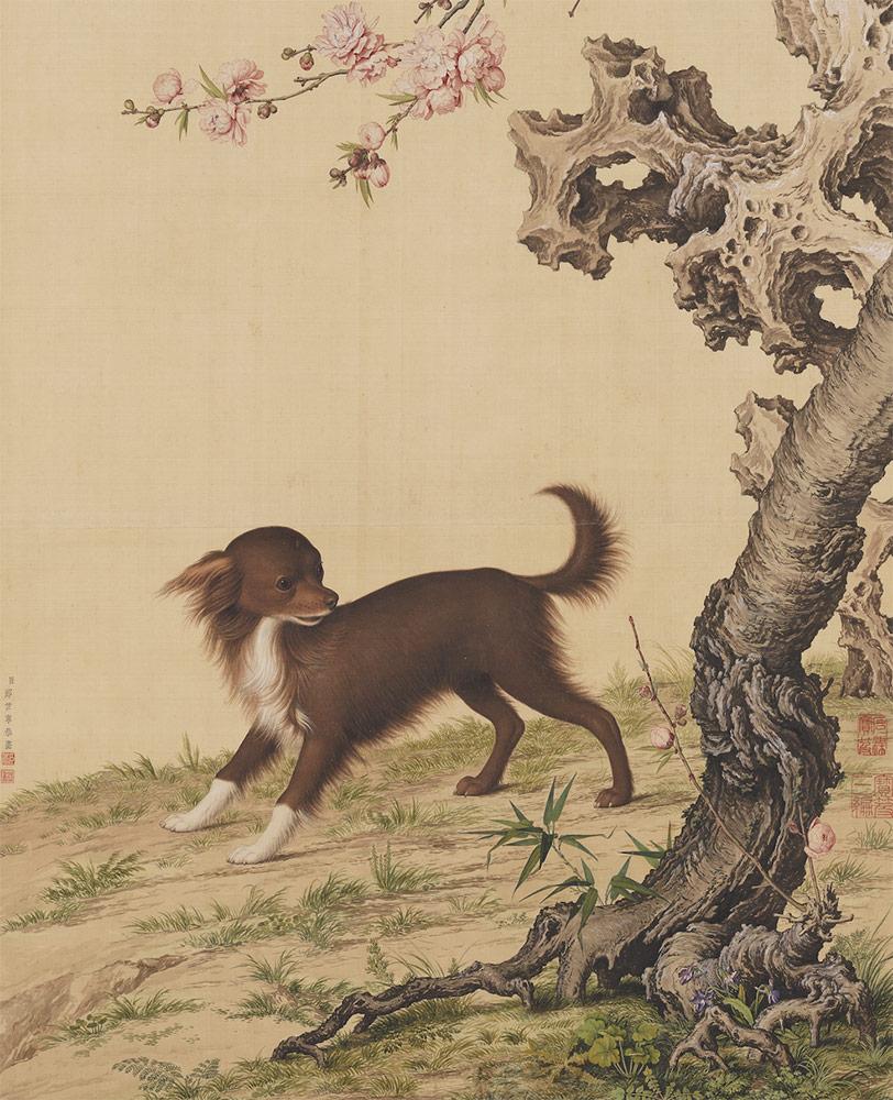 Dog Under Flowers