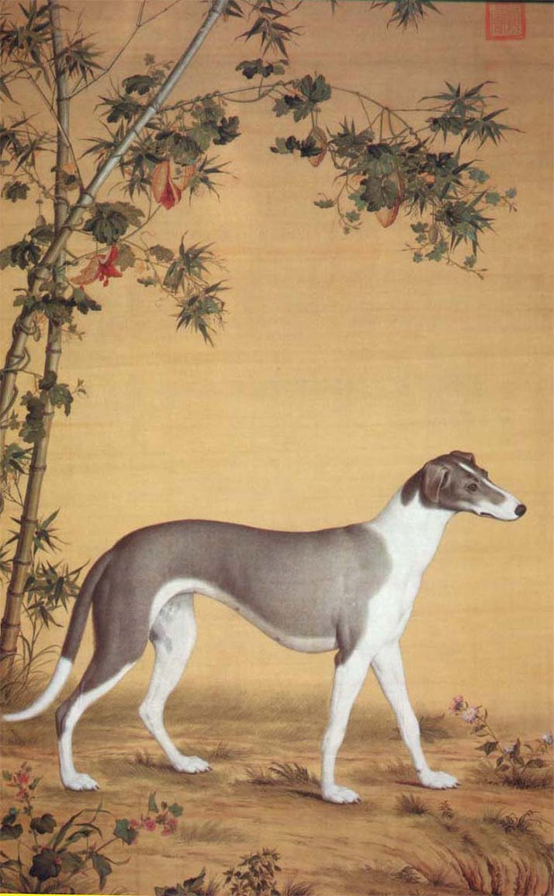 Dog by bamboo
