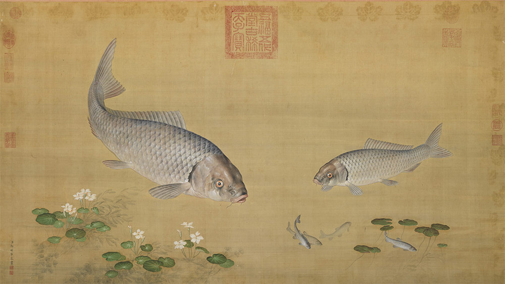 Fish and Aquatic Plants