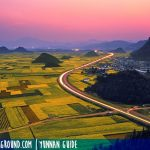 Travel to Qujing, Welcome to the Golden Sea of ​​Luoping