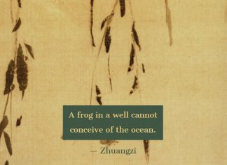 A-frog-in-a-well-cannot-conceive-of-the-ocean