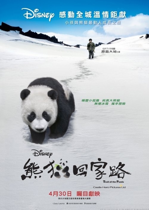 "Poster for the movie ""Trail of the Panda"""