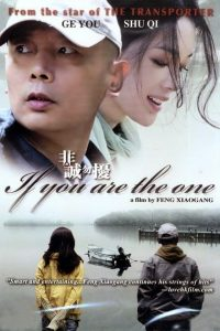 "Poster for the movie ""If You Are the One"""