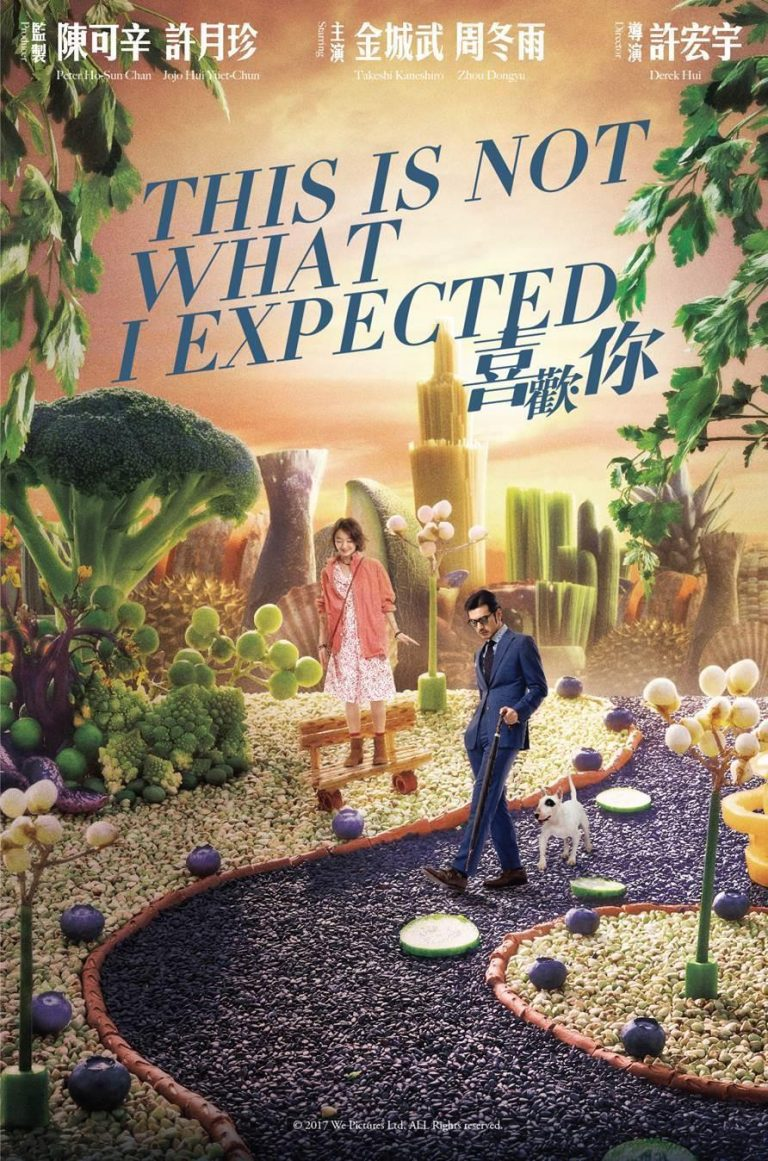 "Poster for the movie ""This Is Not What I Expected"""