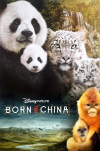 "Poster for the movie ""Born in China"""