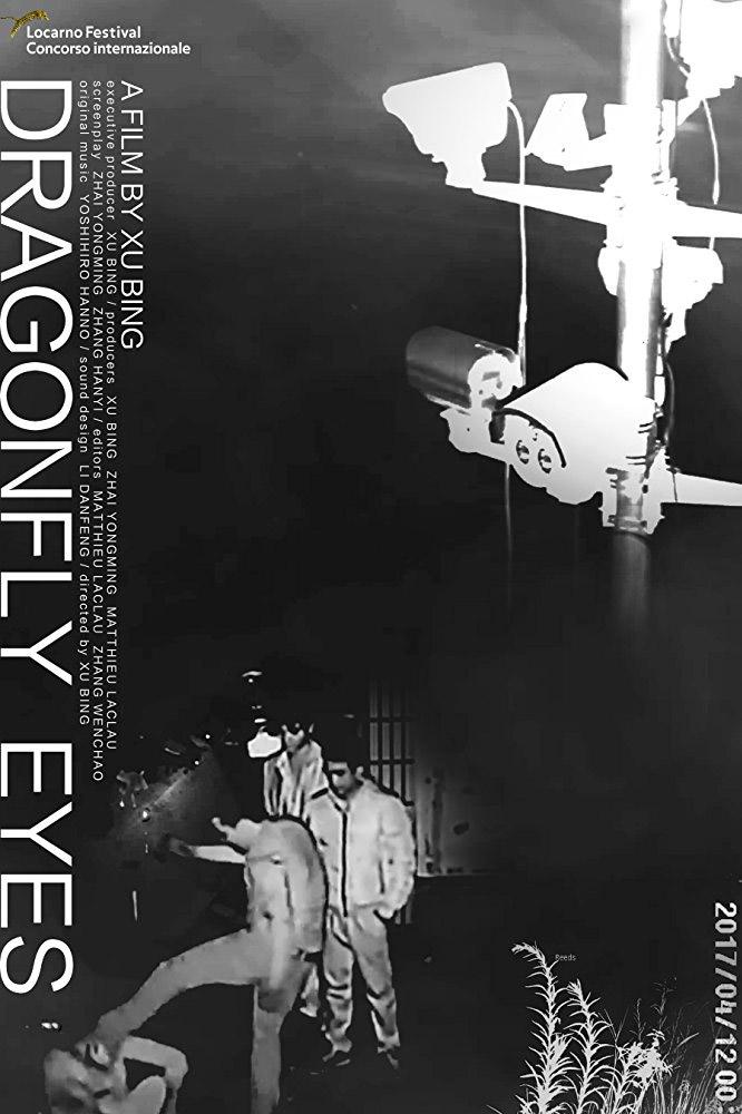 dragonfly-eyes-poster