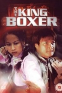 "Poster for the movie ""The King Boxer"""