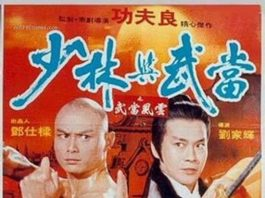 "Poster for the movie ""Shaolin & Wu Tang"""