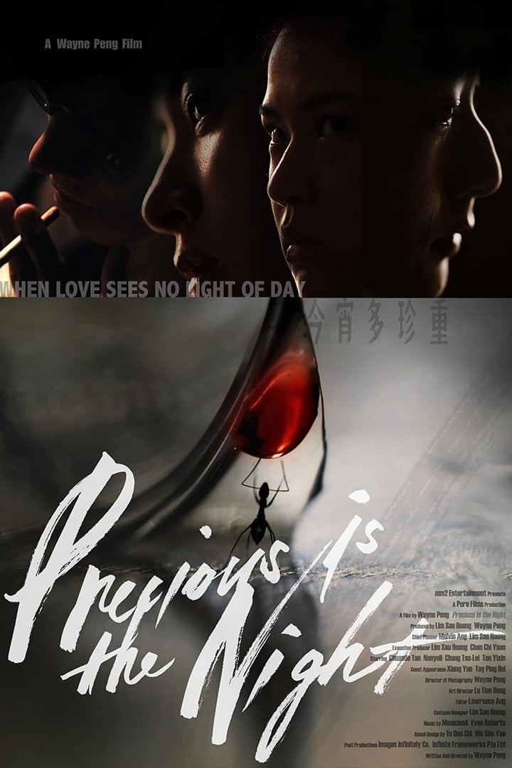 "Poster for the movie ""Precious Is The Night"""